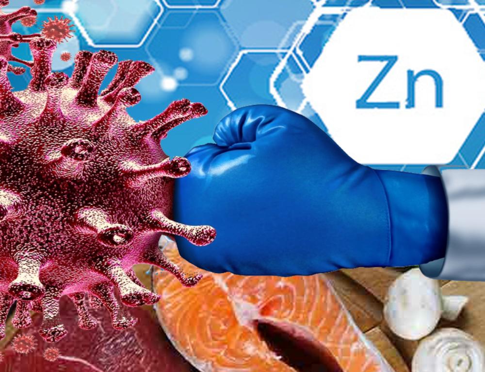 Zinc in Human Health: Effect of Zinc on Immune Cells