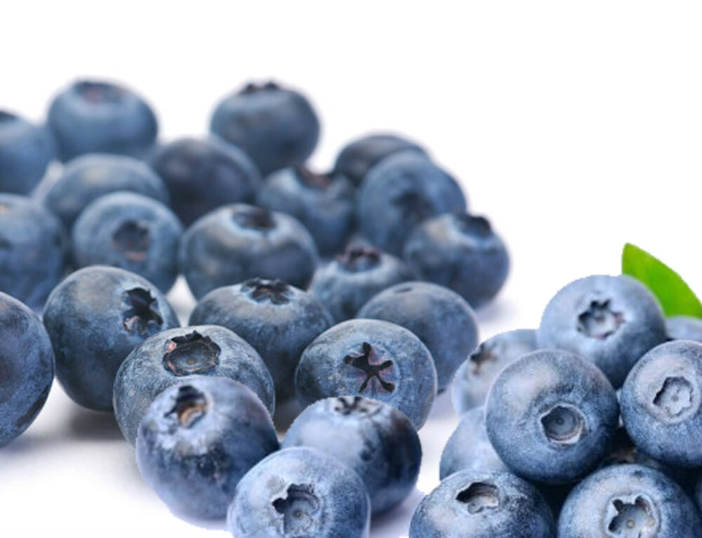 Delicious, Colorful, and Healthy – Blueberries!